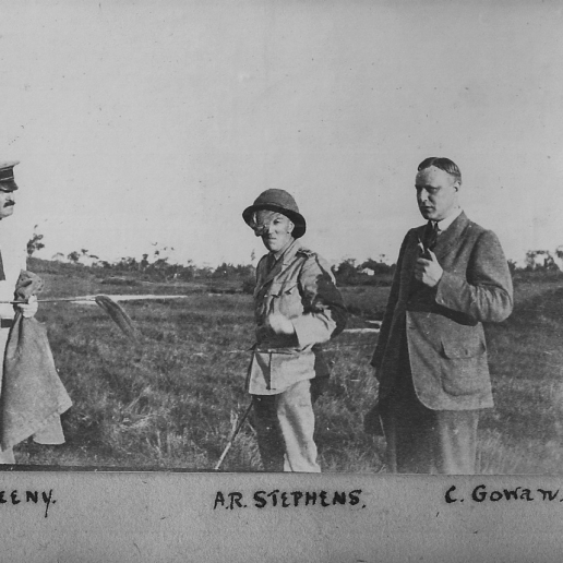 Sweeny, Stephens and Gowan